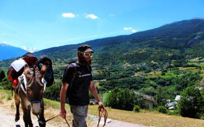 Tour del Mont Fallère con Asini(Ugo e Ardito)